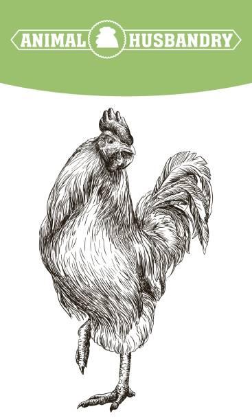Farmington Pennsylvania Clip Art, Vector Images & Illustrations.