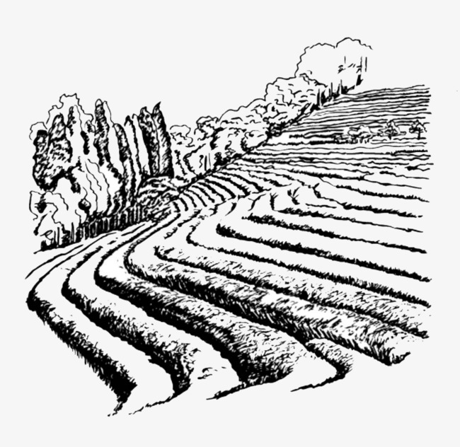 The best free Farmland drawing images. Download from 35 free.