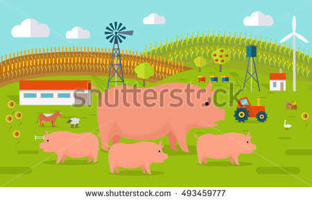 "pig Farming Rural"" Stock Photos, Royalty."