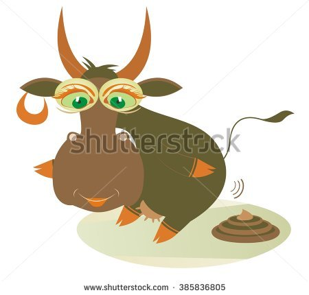 Cow Manure Stock Photos, Royalty.