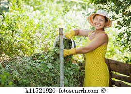 Farmyard manure Images and Stock Photos. 127 farmyard manure.