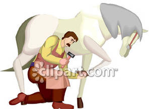 Farrier Shoeing A Horse.
