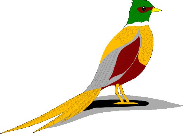 Pheasant Clipart.