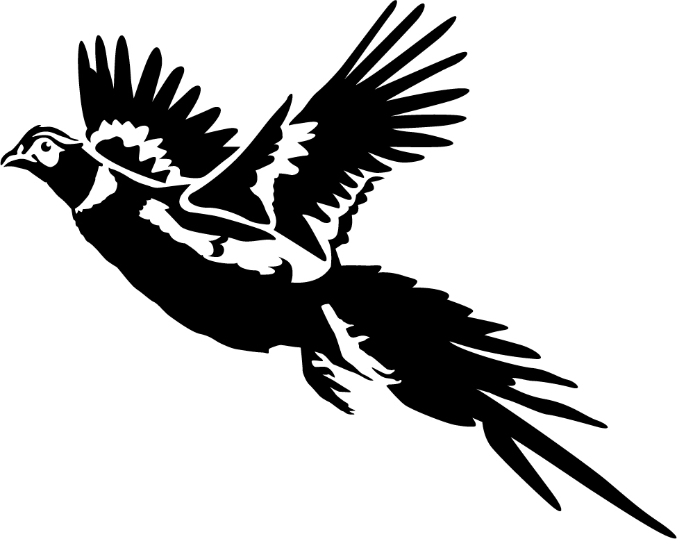 Flying Pheasant Clipart.