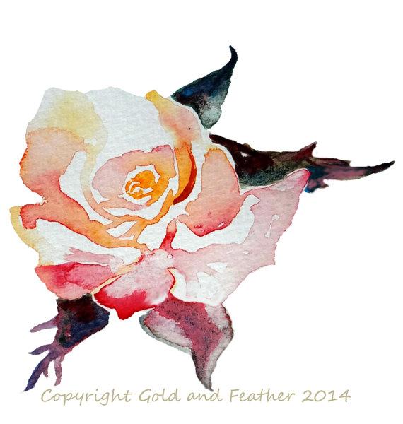 Peach Rose Clipart.