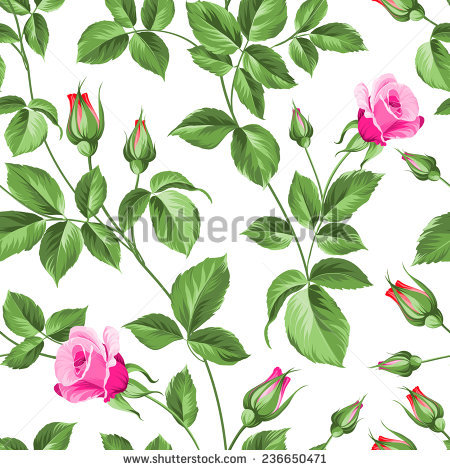 Rose Branches Stock Photos, Royalty.