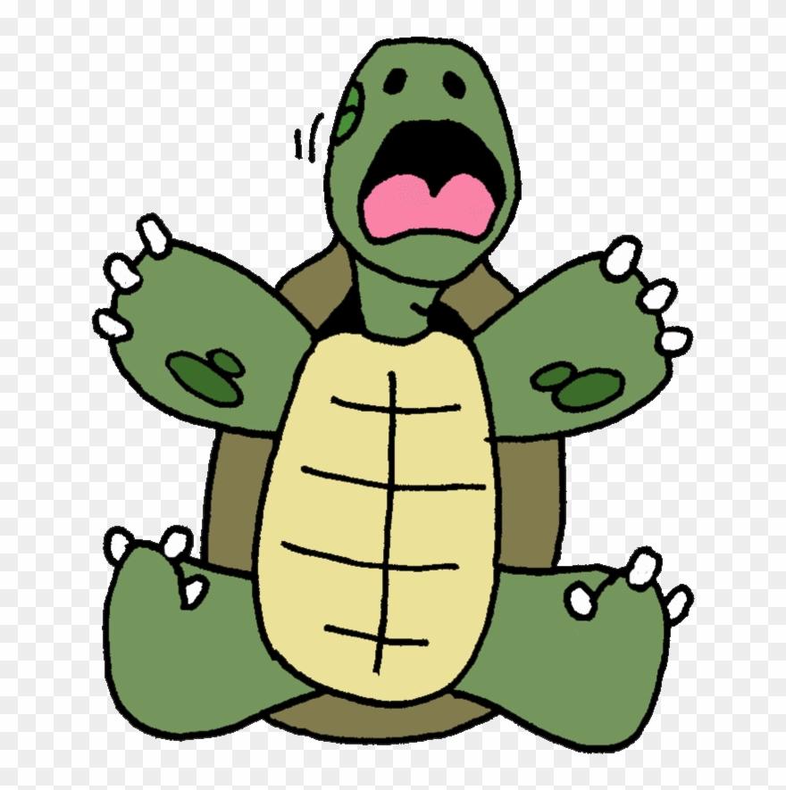 Tortoise Clipart Tortoise Turtle Clip Art.