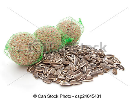Stock Photos of Wild bird winter food, sunflower seeds and fat.