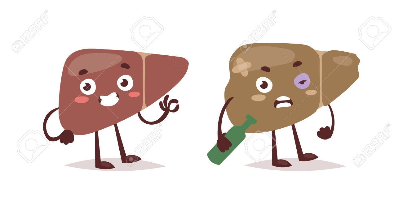 Alcoholic Liver Harm Disease. Fatty Liver Fibrosis Hepatitis.