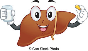 Liver Stock Illustrations. 8,955 Liver clip art images and royalty.