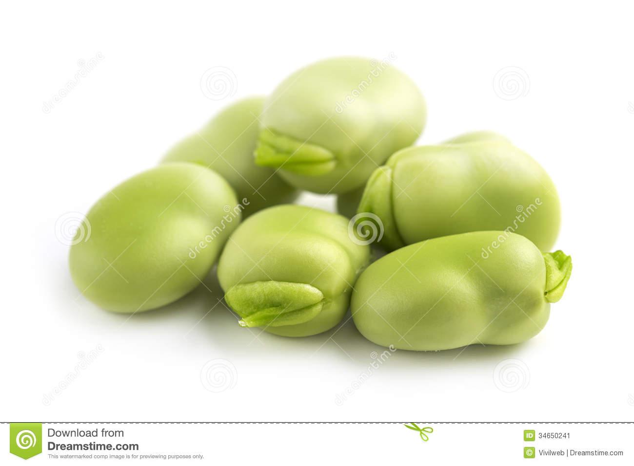 Broad bean clipart.