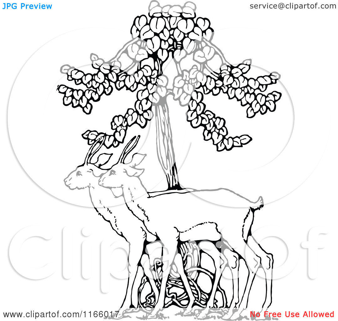 Fawn and tree clipart.