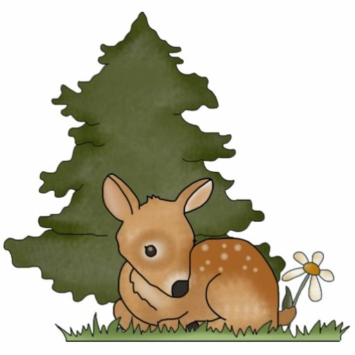 17 Best images about FAWN SKETCHES on Pinterest.