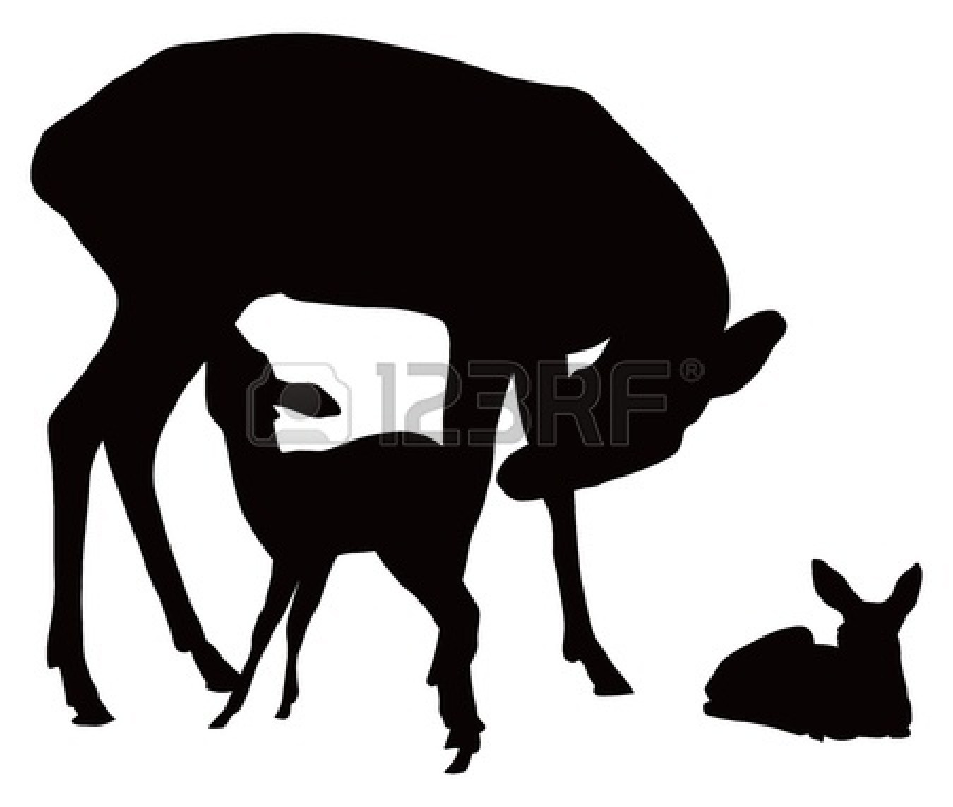Fawn Clipart Black And White.