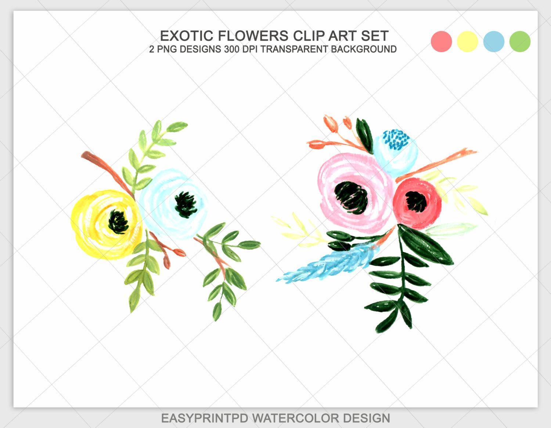 Watercolor Flowers Watercolor clip Art Floral by easyprintPD.