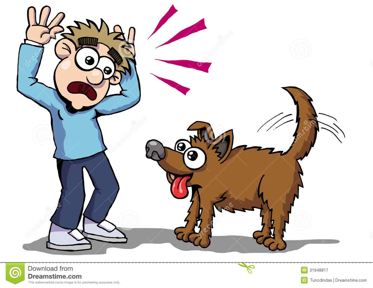 Cat Chase Dog Kid