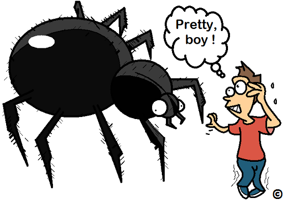 confronting a fear of spiders.
