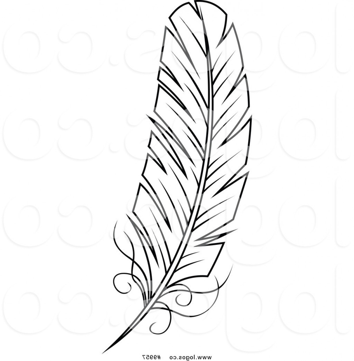 Royalty Free Clip Art Vector Black And White Feather Logo By Vector.
