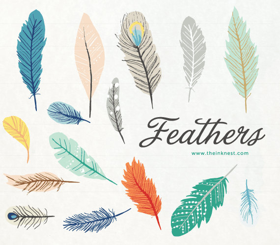 Free Feather Background Cliparts, Download Free Clip Art.