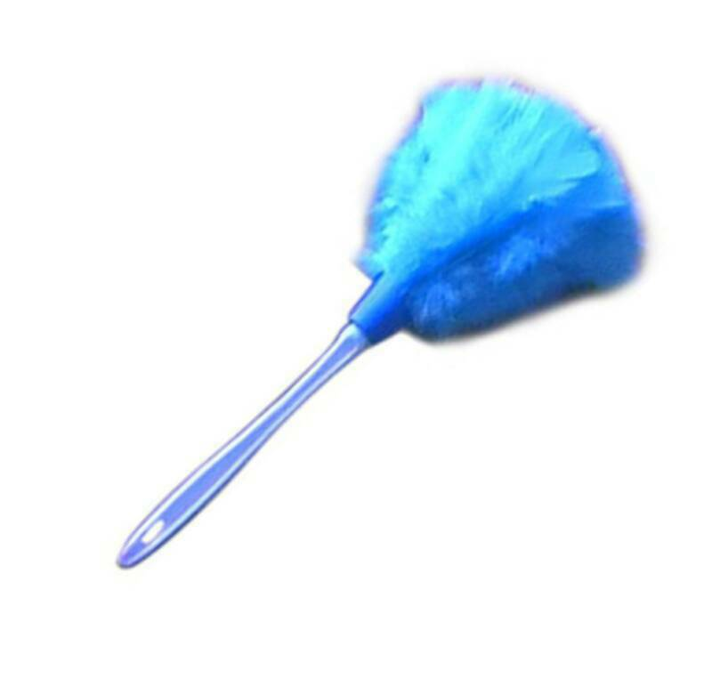 Feather Duster Related Keywords & Suggestions.