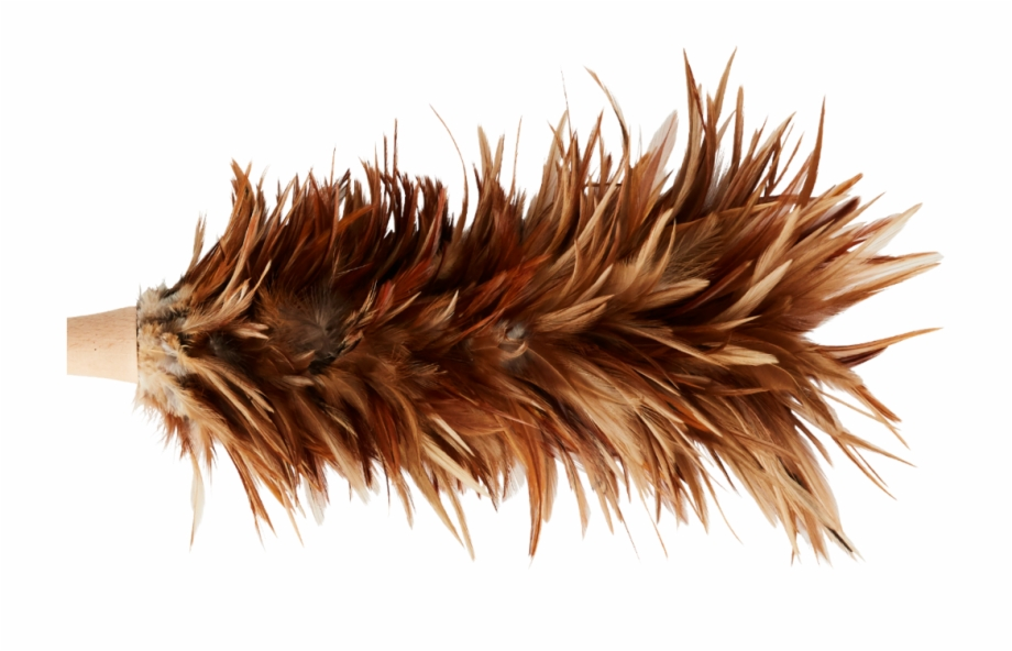 Natural Feather Duster , Png Download, Transparent Png Download For.