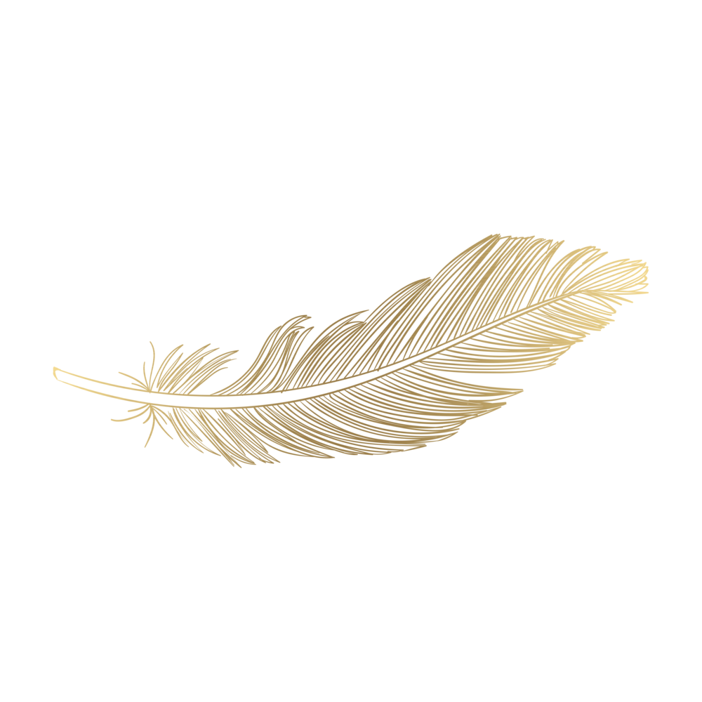 Feather PNG Download Image.