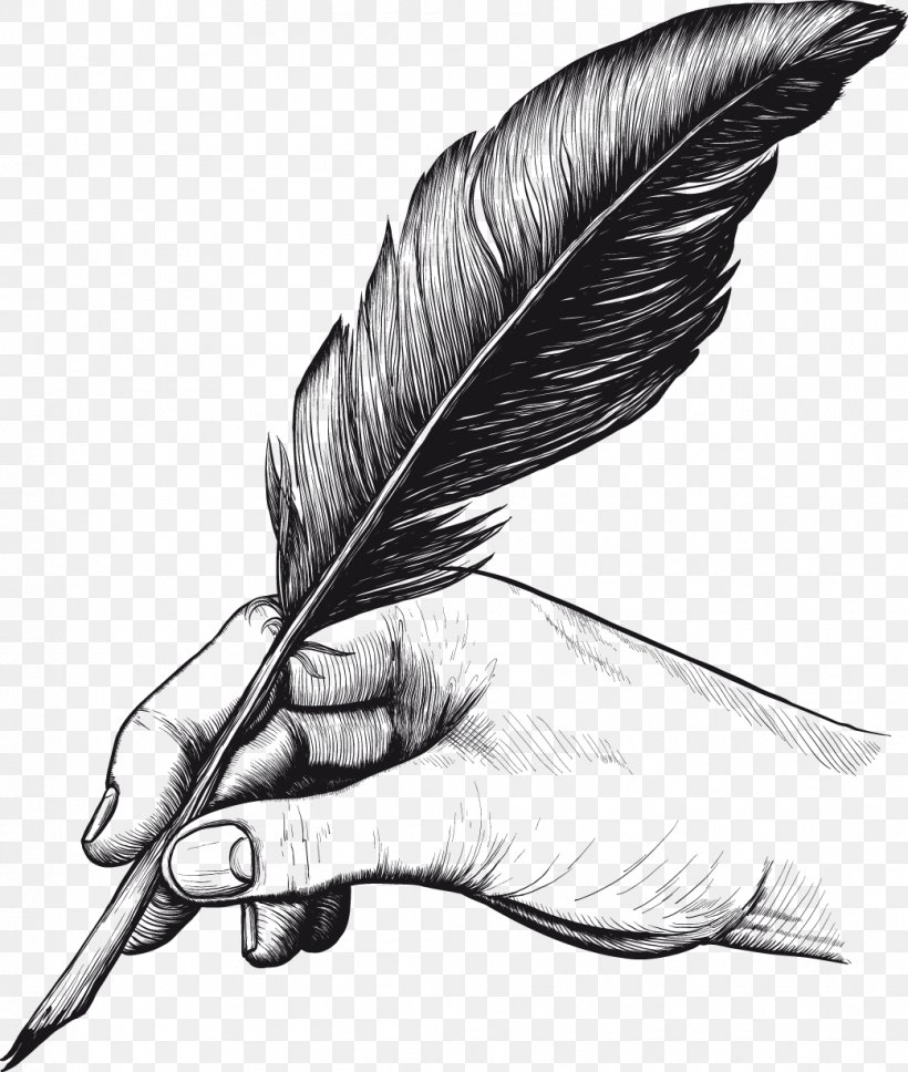 Quill Pens Feather Drawing Clip Art, PNG, 1041x1229px, Quill.