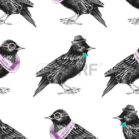 Feather starling clipart #15