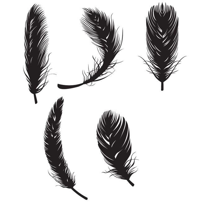 Feather Free Vectors.