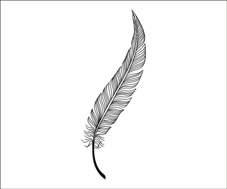 Decorative Feather SVG Digital Instant Download Feather Vector Cricut  Cutting Feathers PNG Laser Engraving.
