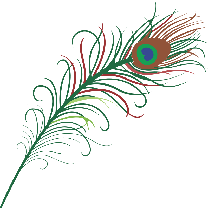 Simple Feather Clipart.