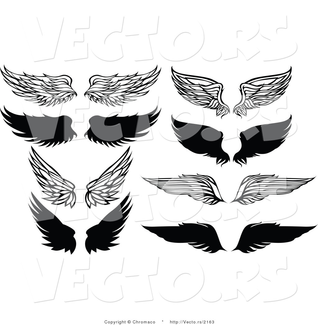 Vector of 8 Unique Feathered Wings.