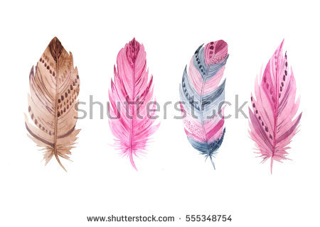 Feathers Clipart Stock Photos, Royalty.