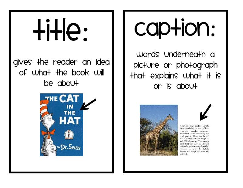 Nonfiction text features clipart.