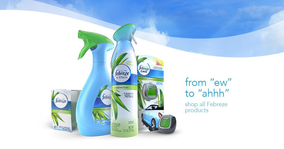 Air Fresheners & Odor.