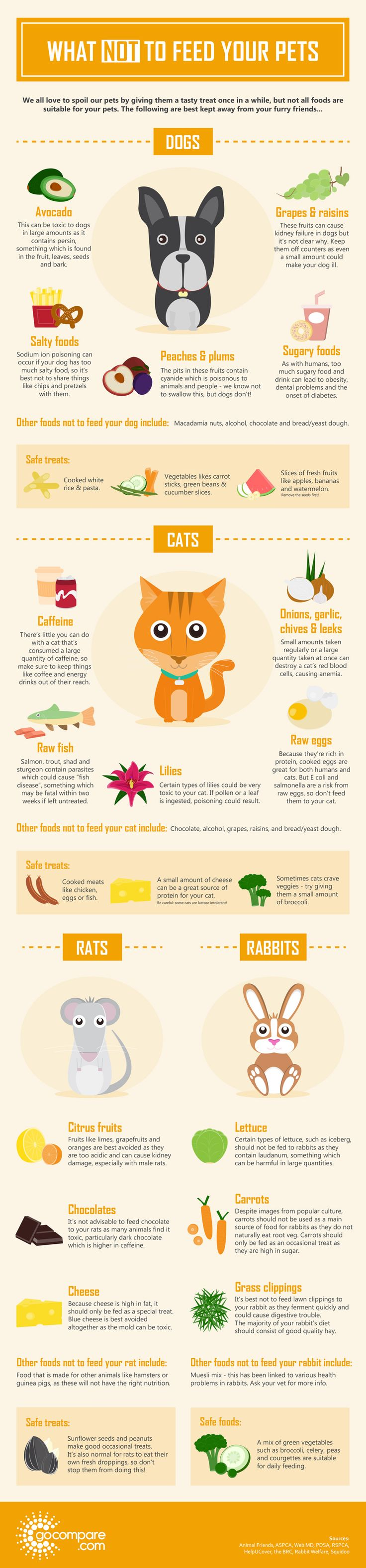 17 Best ideas about Pet Infographic on Pinterest.