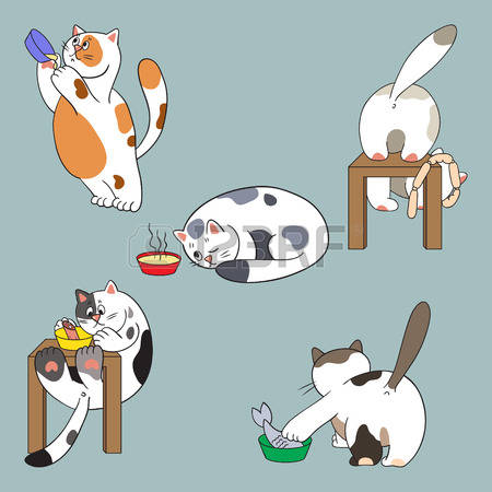 2,400 Feline Feed Stock Illustrations, Cliparts And Royalty Free.