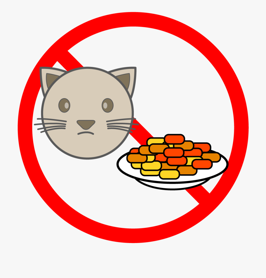 Please Do Not Feed The Cats Cats.