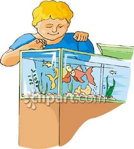 Feed the fish clipart 1 » Clipart Portal.