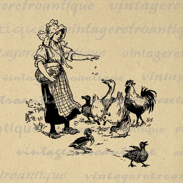 Digital Image Girl Feeding Ducks Graphic Birds Download Old.