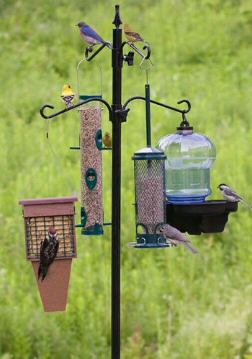 Solar Lamp & Bird feeding station ~ Don't pay upwards of 50 bucks.