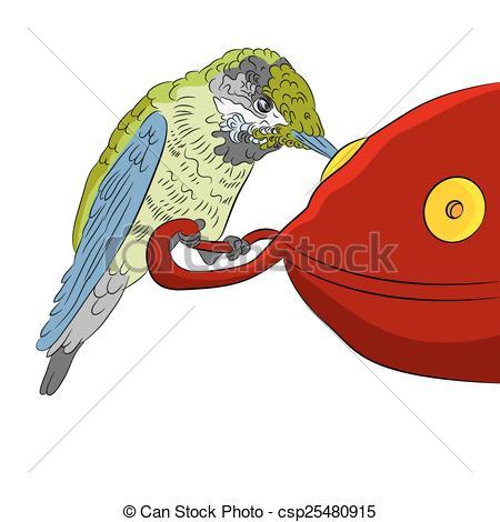 Vector Clip Art of Hummingbird at Feeder.