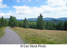 Stock Image of landscape in the Black Forest, Germany Feldberg.