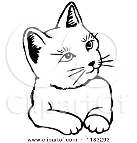 Royalty Free Feline Illustrations by Prawny Page 1.