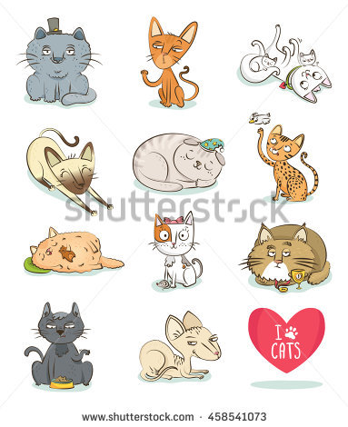 Turkish Angora Stock Photos, Royalty.