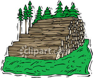 Stack of Felled Trees.