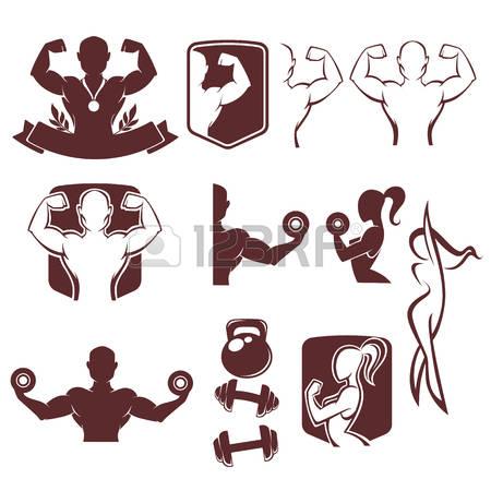 1,297 Female Bodybuilder Stock Vector Illustration And Royalty.