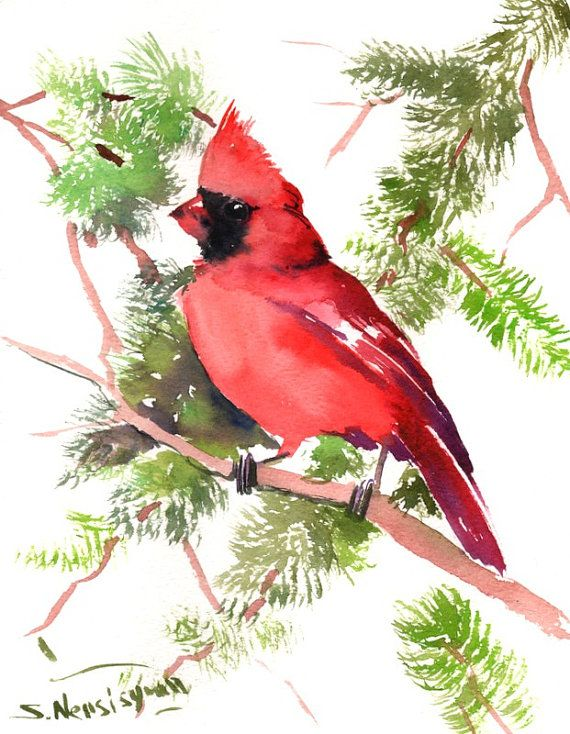 1000+ images about Cardinals on Pinterest.