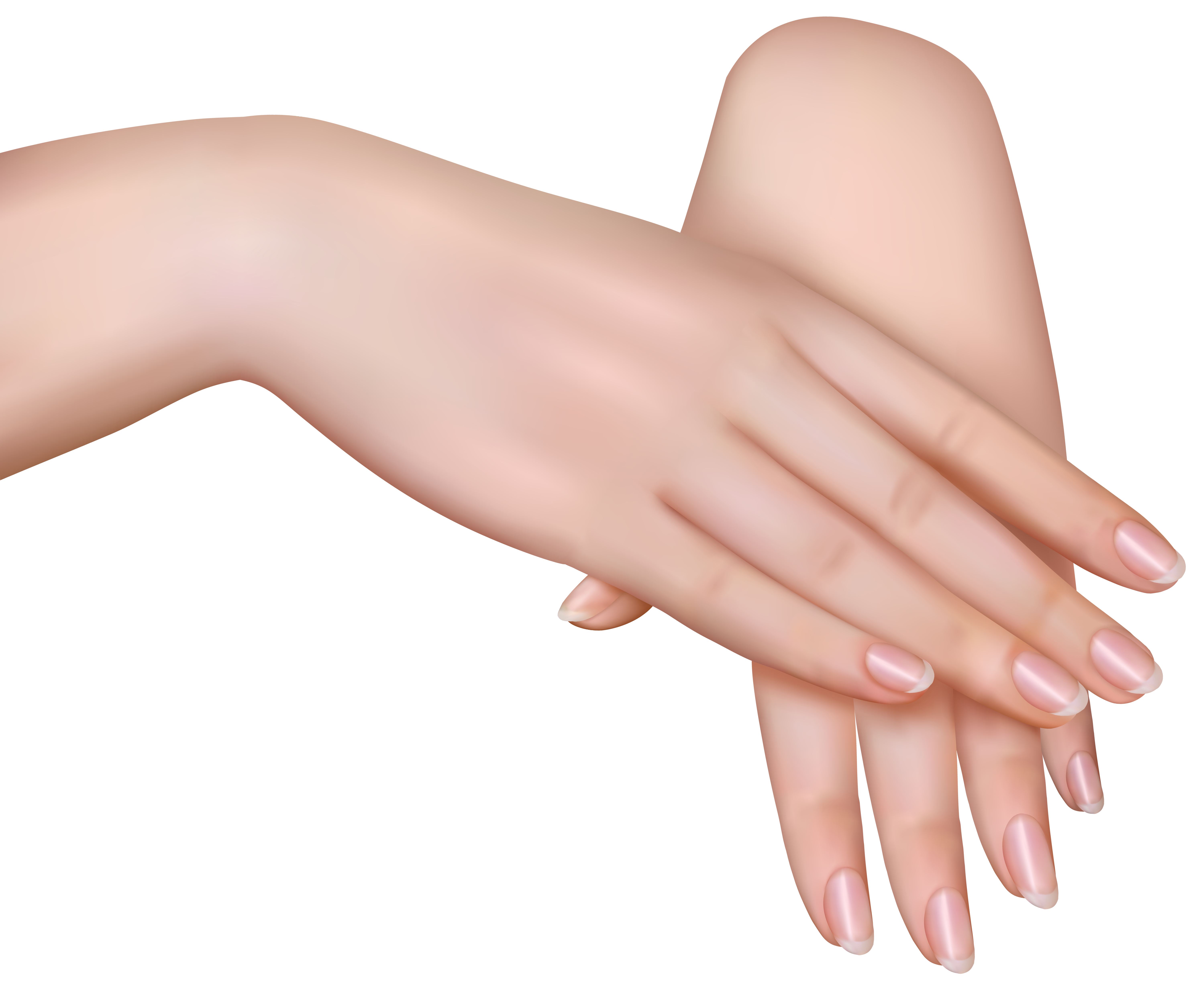 Female Hands PNG Clipart Image.