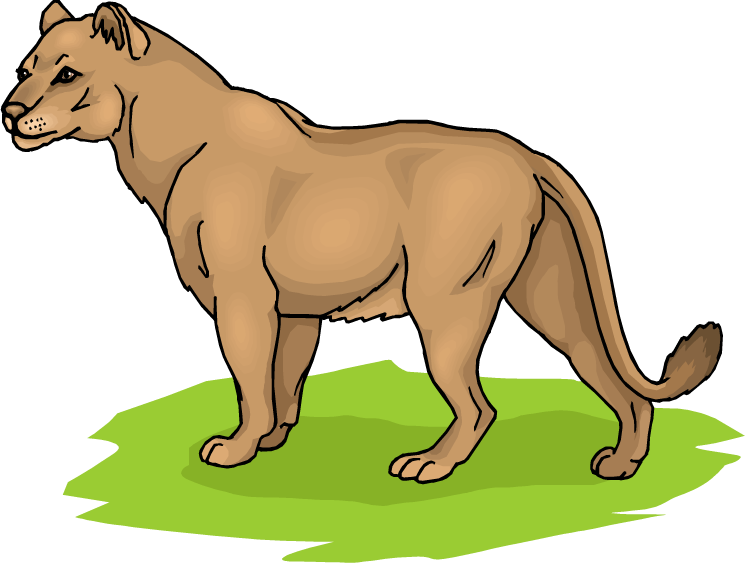 Female Lioness Clipart.
